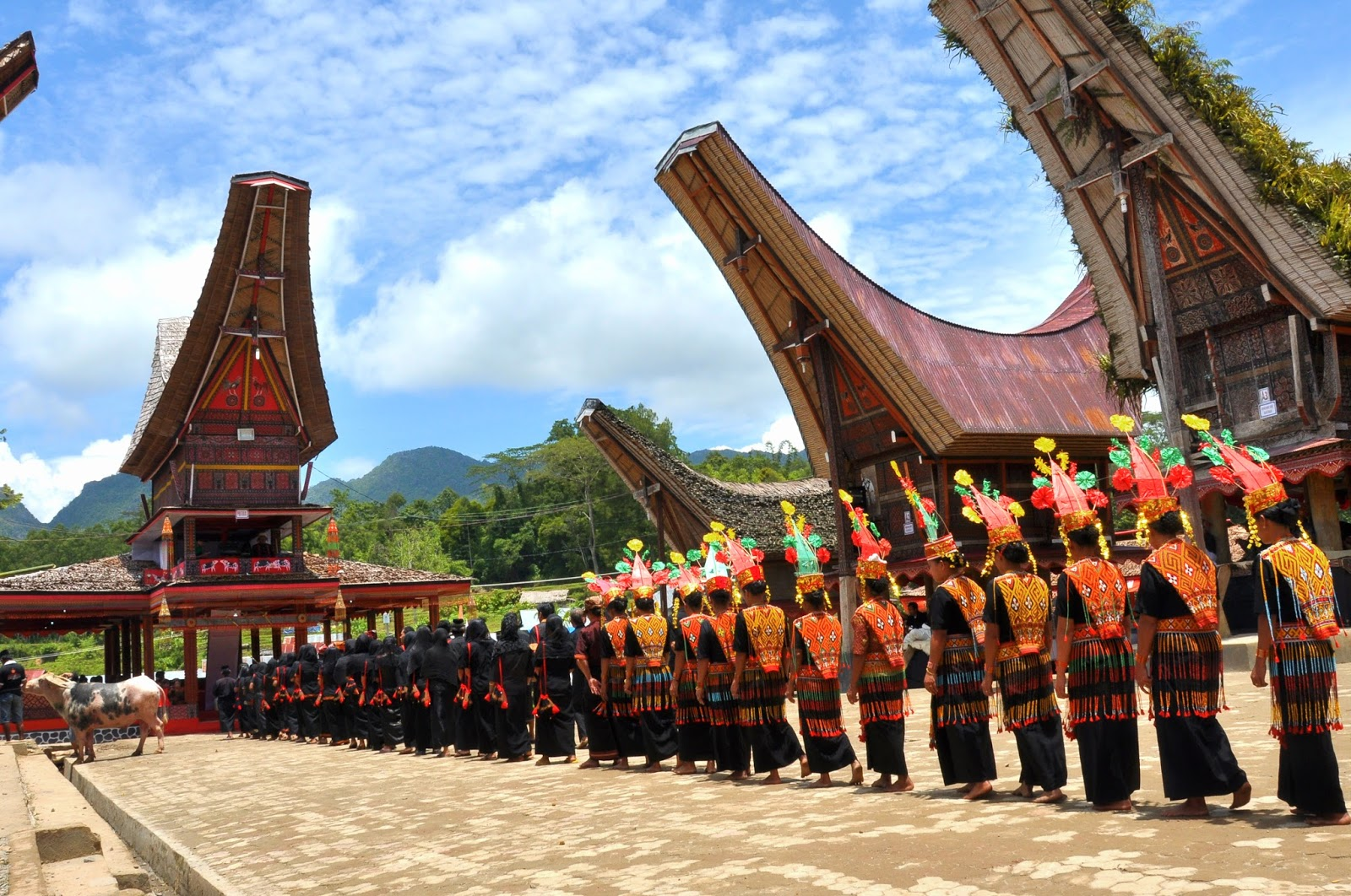 Pembagian Daerah Adat Dan Fungsi Pemimpin Adat Suku Toraja