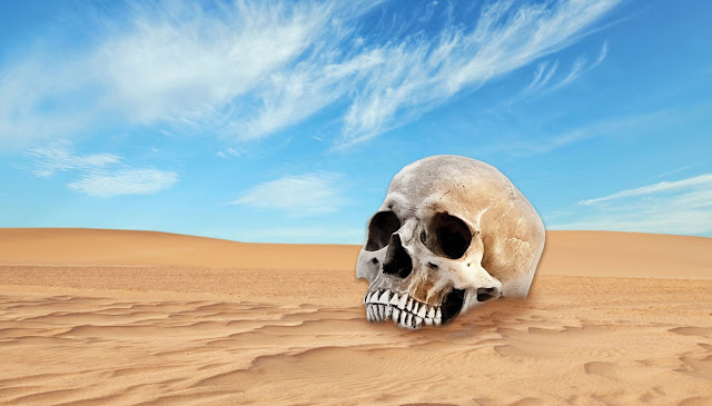 DID ANCIENT RACISTS CREATE SAHARA DESERT ON PURPOSE TO KEEP OUT BLACKS?