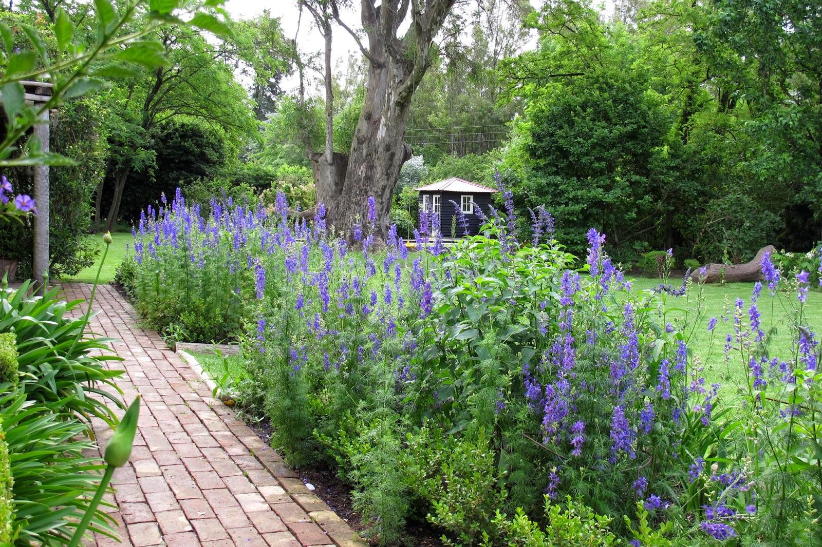 En el jardin va queriendo el jard n - Plantas para el jardin todo el ano ...