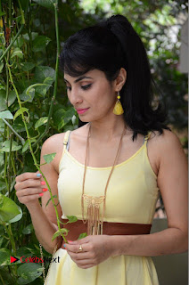 Actress Manisha Kelkar Latest Picture Gallery in Yellow Short Dress  0033.JPG