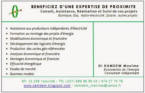 Dr Maxime Kamdem Cv