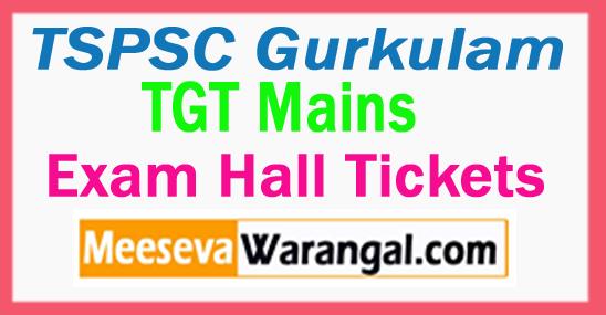 TSPSC Gurkulam TGT Mains Hall Tickets 2017