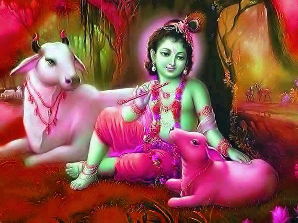 Baby Krishna Cute Wallpapers With Cow Background
