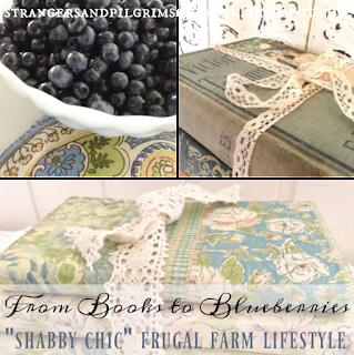 http://strangersandpilgrimsonearth.blogspot.com.au/2016/09/from-beautiful-books-to-blueberries.html