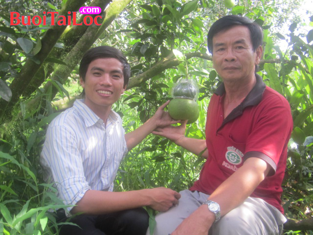 Nguyen-Thanh-Long-tai-vuon-buoi-ho-lo-mien-Tay-cung-ong-Vo-Trung-Thanh