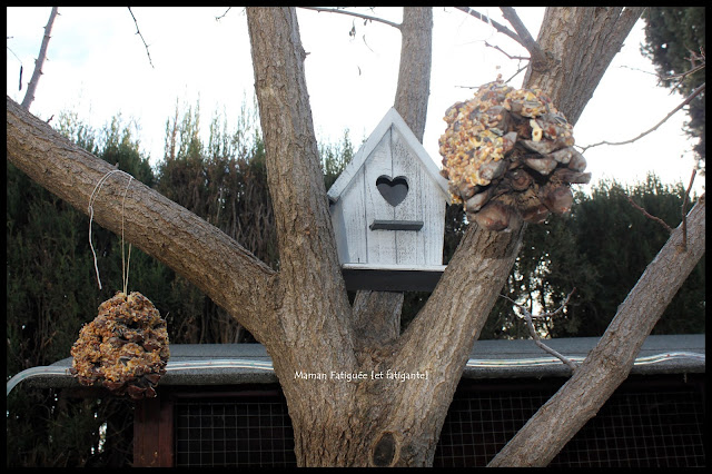 activité oiseau blog maman