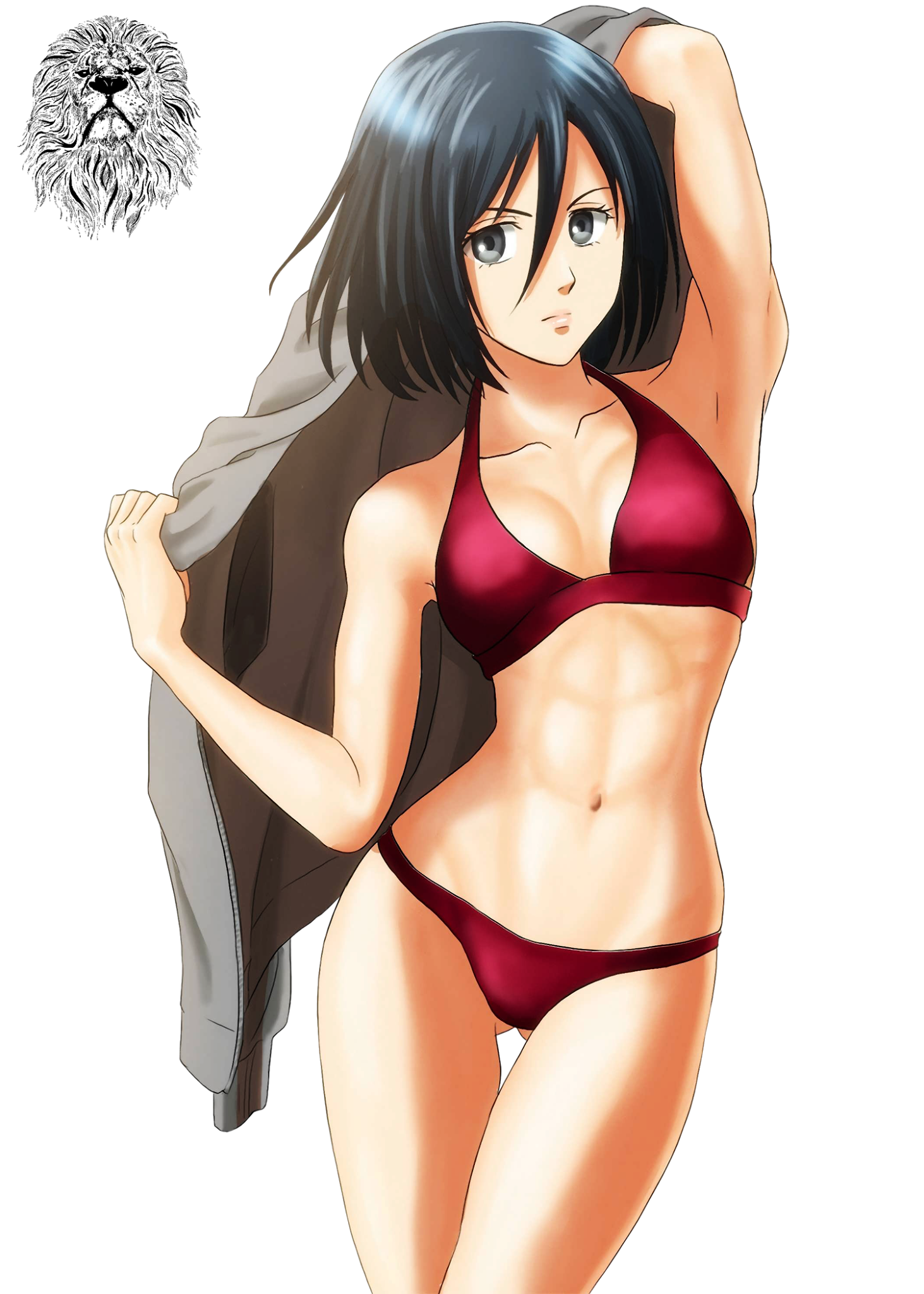 Shingeki - Mikasa Ackerman