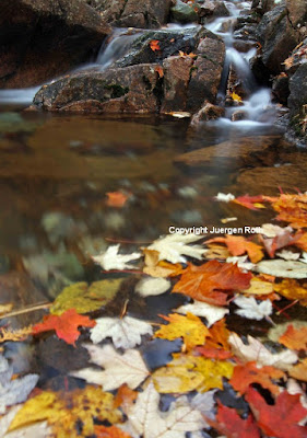 http://www.apogeephoto.com/photography-guide-to-acadia-national-park-part-2/