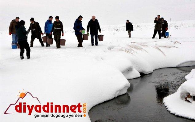 Dalam Cuaca Ekstrim, Pemimpin Turki Terjun Langsung Tebar Makanan Untuk Hewan Liar Agar Bertahan Hidup