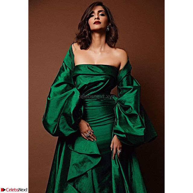 Sonam Kapoor in Deep neck green Gown ~  Exclusive Pics 002.jpg