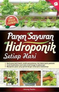 URBAN FARMING: PANEN SAYURAN HIDROPONIK SETIAP HARI