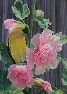 flores-petalos-coloridos-bodegones