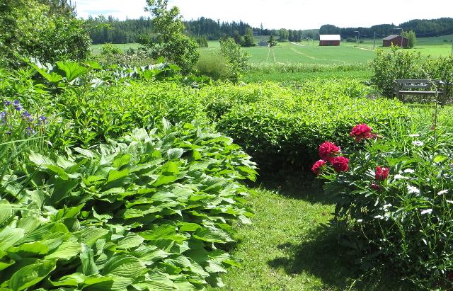 majamäki tuusula puutarha