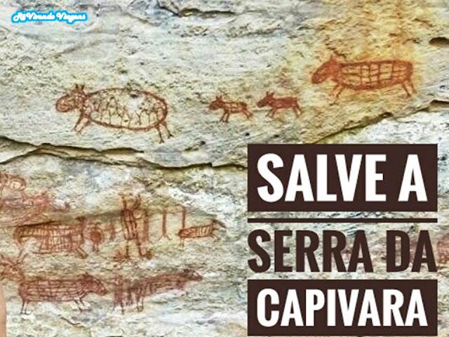 SOS Serra da Capivara
