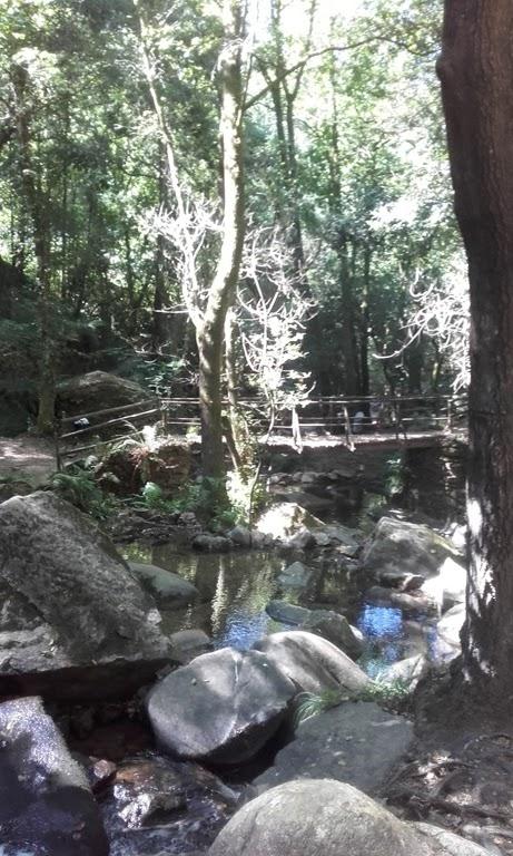 Zona envolvente da cascata da Cabreia