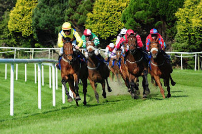 Clonmel racececourse