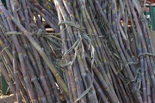 manfaat-air-tebu-bagi-kesehatan,www.healthnote25.com