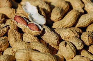 Mengkonsumsi Kacang Dapat Menimbulkan Jerawat