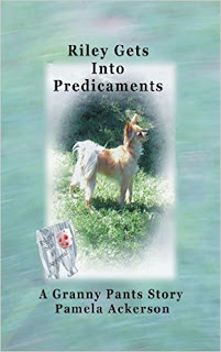 Riley Gets Into Predicaments kindle book