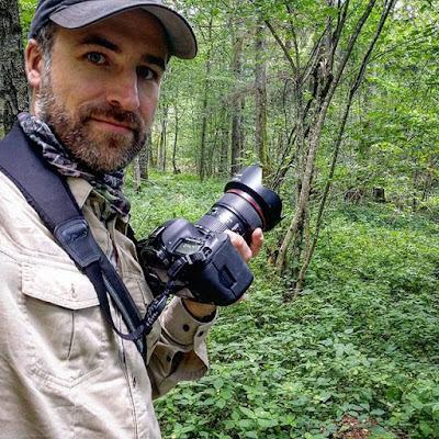 Buscando bisontes en el bosque de Bialowieza
