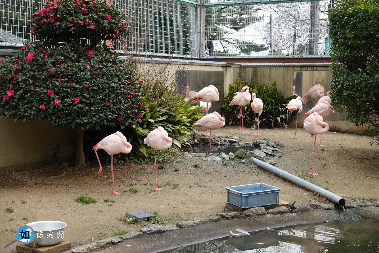 城 動物園 和歌山
