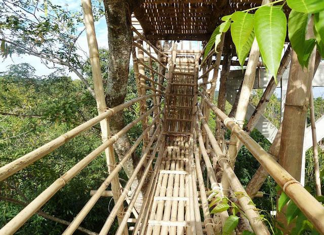 Bamboo walkway at Mawlynnong