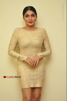 Actress Pooja Roshan Stills in Golden Short Dress at Box Movie Audio Launch  0146.JPG