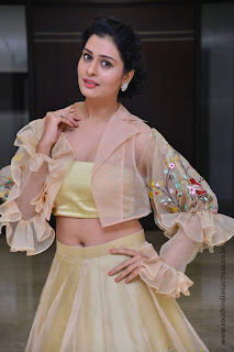 Payal Rajput at RX100 movie audio launch 10