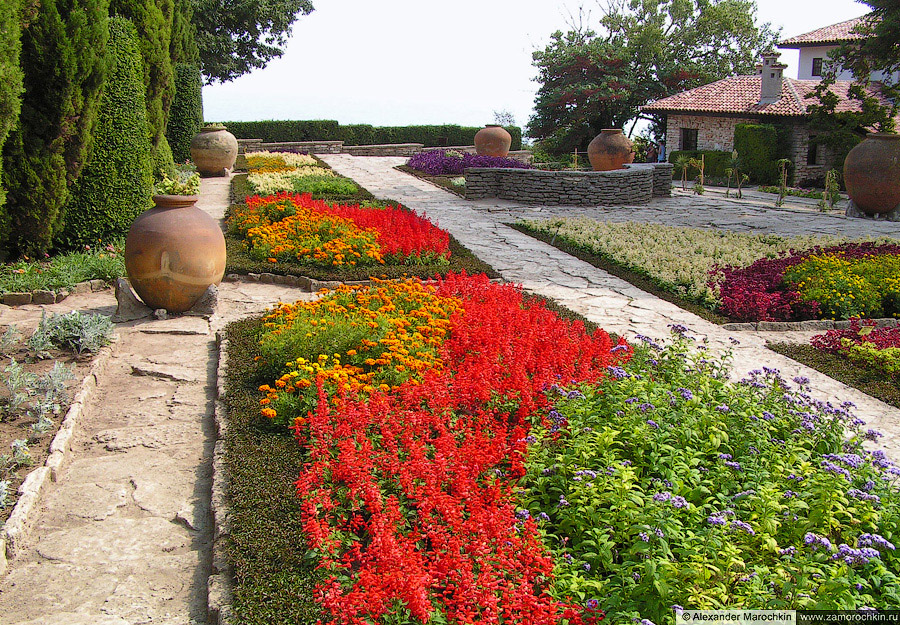 Ботанический сад, цветы. Бачик, Болгария.