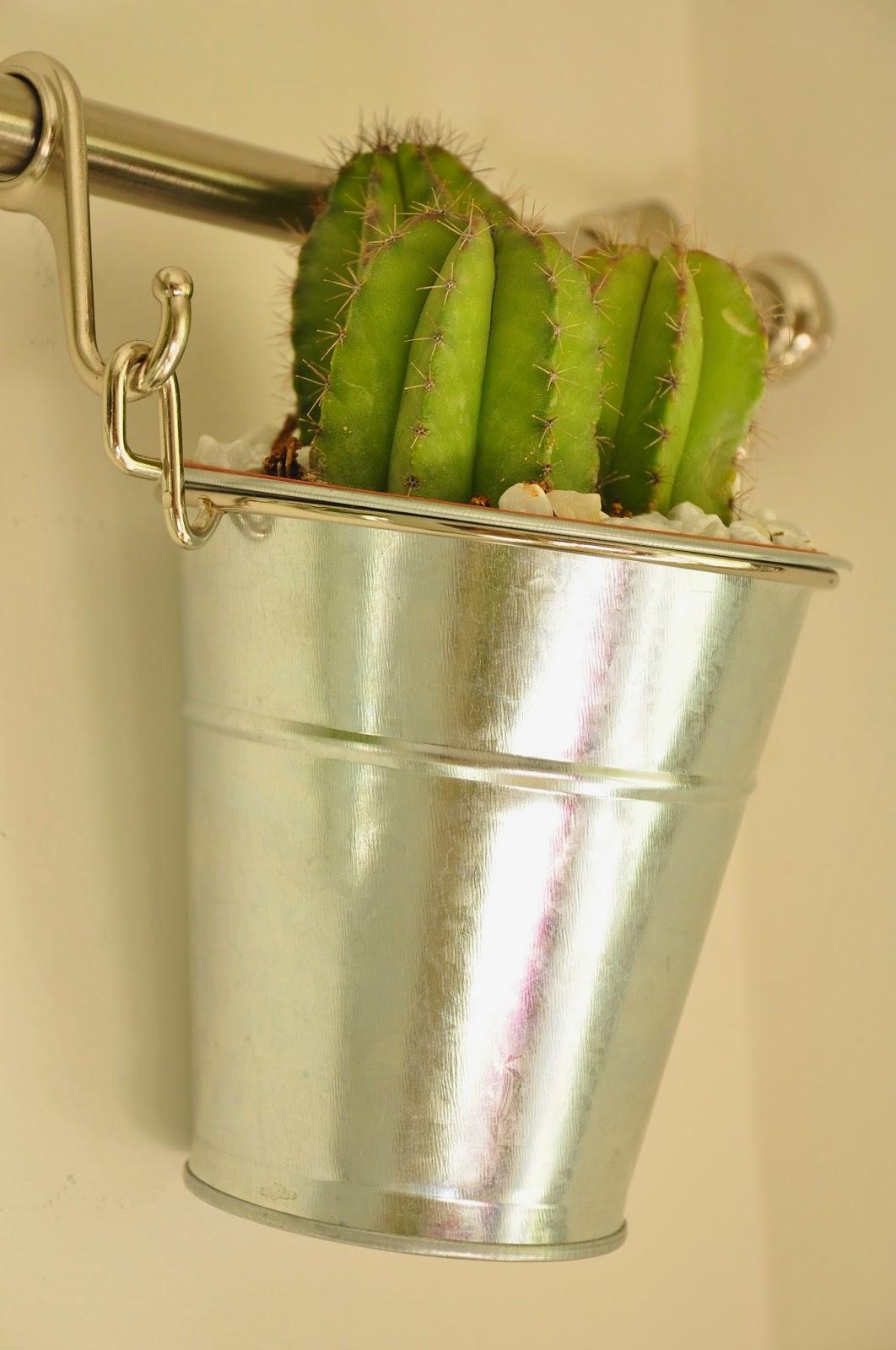 Pensando vintage c mo hacer un jard n vertical en el - Como hacer un jardin bonito y barato ...