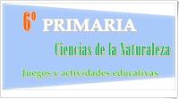 https://www.pinterest.com/alog0079/6o-primaria-ciencias-de-la-naturaleza/
