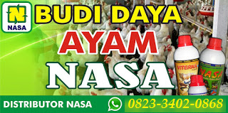 AGEN NASA DI Tapung Kampar - TELF 082334020868