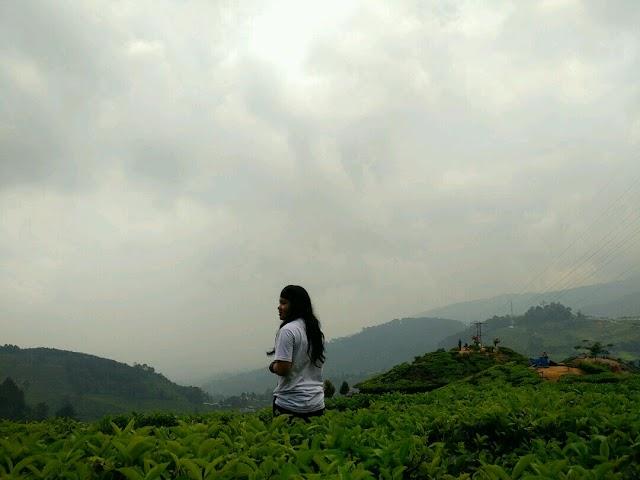 Puncak Bogor, Wisata Alam Yang Menyegarkan Jiwa