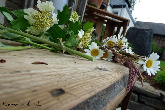 DIY Garten Selbermachen