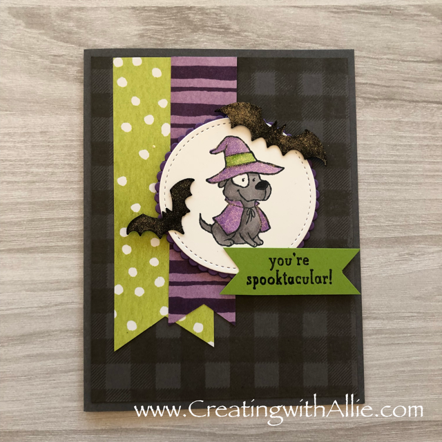 Check out the video tutorial showing you how to make three halloween cards, where I show you tips and tricks for using Stampin Up's Stampin blends as well as the Trick or Tweet stamp set!  You'll love how quick and easy these are to make!  www.creatingwithallie.com #stampinup #alejandragomez #creatingwithallie #videotutorial #cardmaking #papercrafts #handmadegreetingcards #fun #creativity #makeacard #sendacard #stampingisfun #sharewhatyoulove #handmadecards #friendshipcards