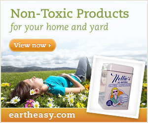 Non-Toxic Home Products