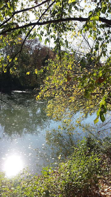 Scenic, Walkway, Yambol  CIty Park, Yambol, River Tundzha,