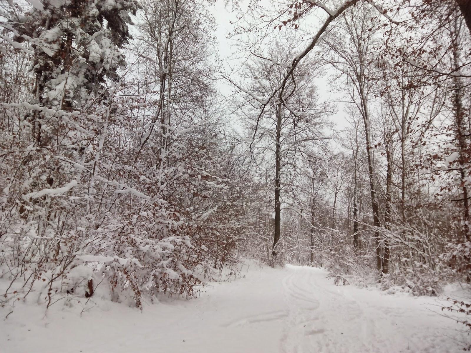 schnee unterwegs