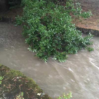 une rivière s'apprête à déborder pour mieux nourrir la terre