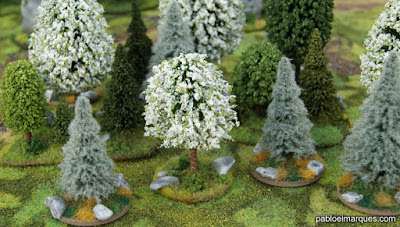 Bosque blanco