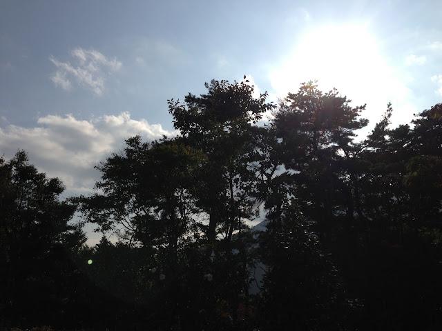イメージ画像:公園