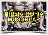 Programa de Hipertrofia Muscular
