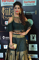 Ritika Singh in a Ethnic Deep Neck Dark Green Choli Ghagra at IIFA Utsavam Awards March 2017 ~ 004.JPG