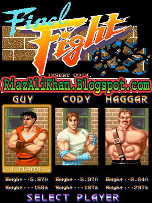 Final Fight PC Game Full Version Free Download - Riaz Ali Khan