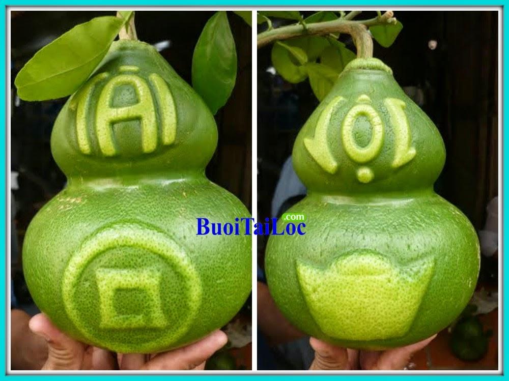 buoi-Ho-Lo-Tai-Loc-Thoi-Vang-Dong-Tien-gia-si-kinh-doanh-dip-tet