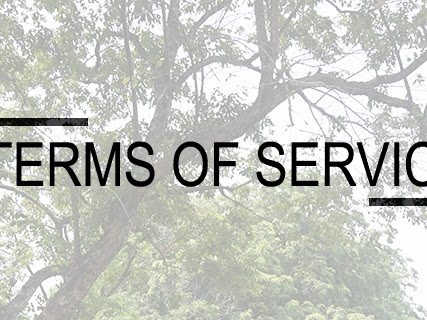 Terms Of Service Dwi Septia's Blog