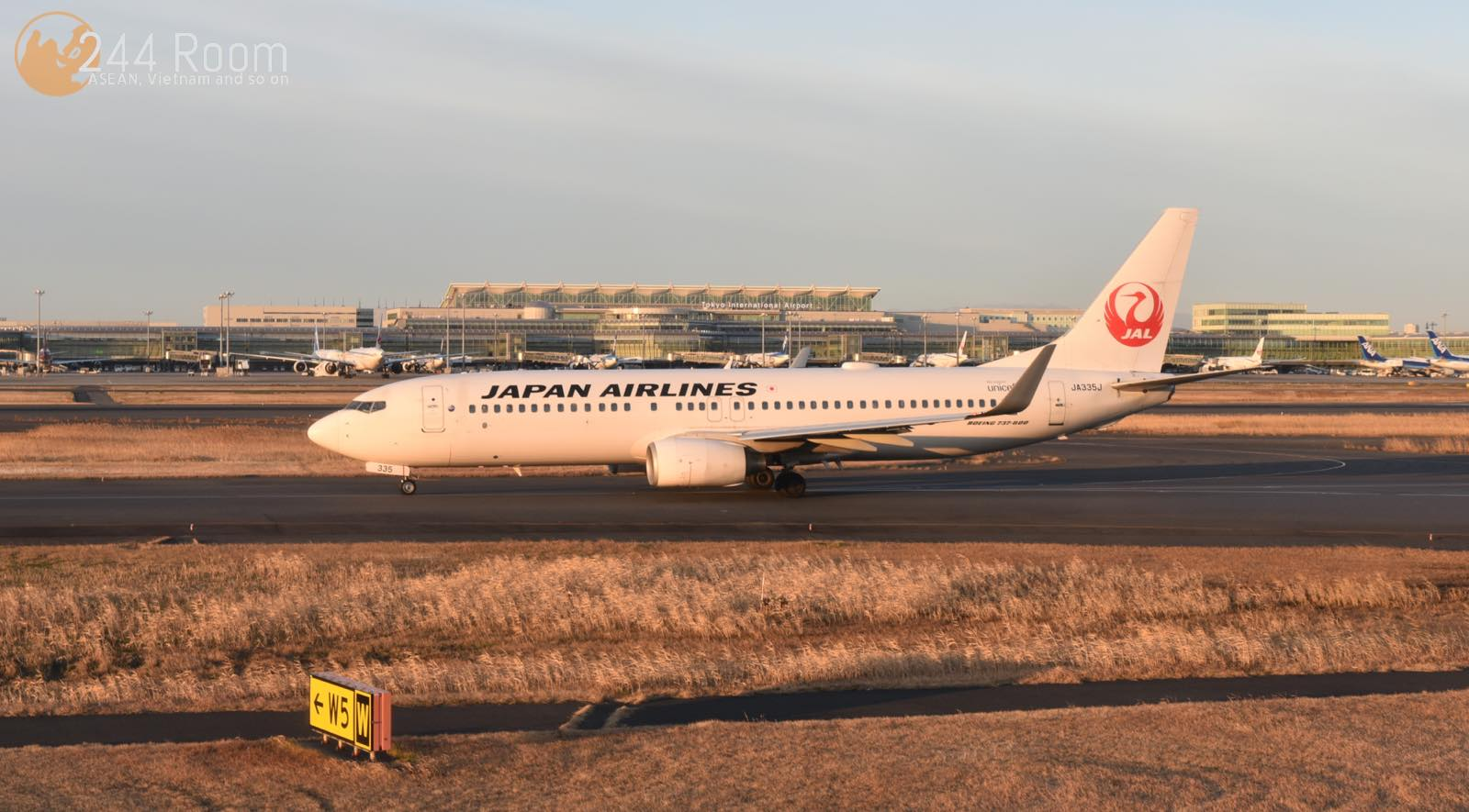 JAL737