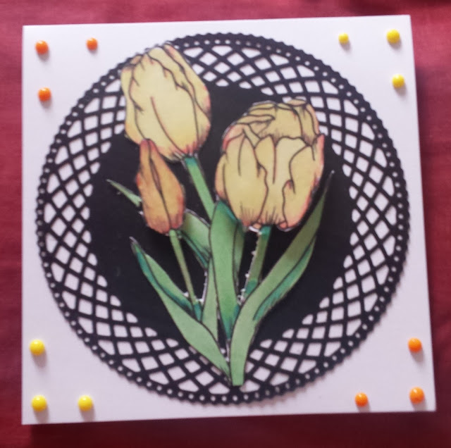 Tulips (not necessarily from Amsterdam) - hand coloured