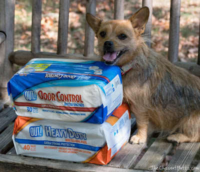 Jada and OUT! Quilted Dog Potty Pads