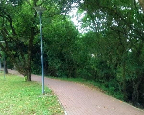 Parque Santana com sábado esportivo e o REC Parque
